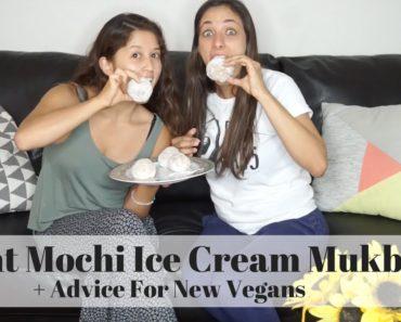 Giant Vegan Mochi Mukbang w/ Vegetaryn | Making Vegan Friends & Advice Going Vegan