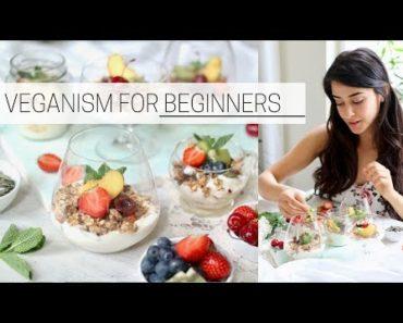 BEGINNER'S GUIDE TO VEGANISM » how to go vegan