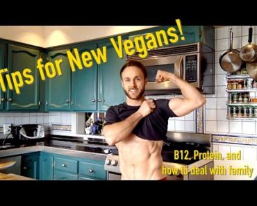 Advice for New Vegans! (B12, Protein and more)