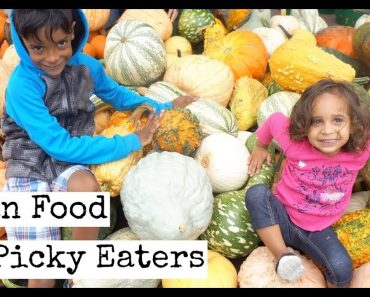 Vegan Food for Picky Eaters | Vegan Food for kids