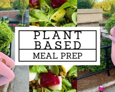 FREE Plant based/vegan meal prep for BEGINNERS!| CURVY VEGAN RECIPES