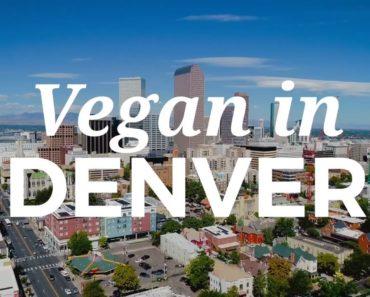 Best Vegan Food in DENVER! 🍔  The Humane League