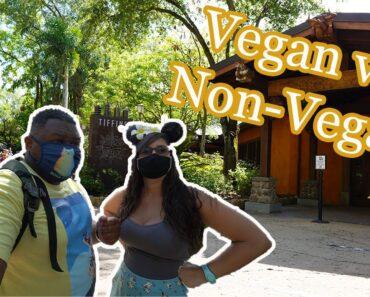 Tiffins Restaurant | Dinner | Vegan & non-vegan food review | Animal Kingdom | Walt Disney World