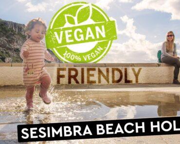 Sesimbra: Clean Beaches | Cheap Apartments | Vegan Food