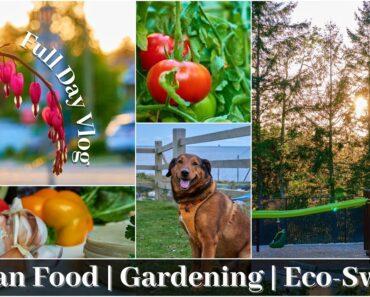 Gardening, Vegan Food & Eco-Swaps | Lifestyle Vlog