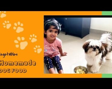 Vegetarian Homemade Dog Food with Flaxseeds | Healthy Dog Food | Dog food recipe for small breeds