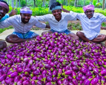 BRINJAL CURRY   Oil Brinjal Curry Recipe Cooking in Village   Eggplant Recipes   Vegetarian Recipes