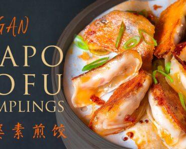 Tofu Recipe | How to make the Crispy VEGAN MAPO TOFU DUMPLINGS [simple ways to make!]素麻婆豆腐煎饺